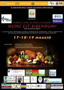 nunc_est_bibendum